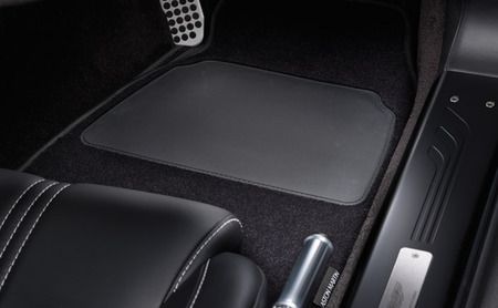 DBS Floor Mats (2piece) - 702305